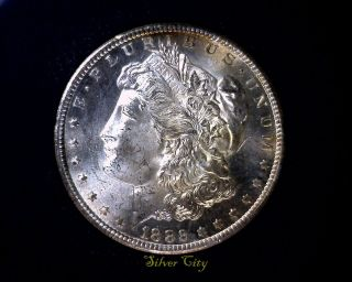 Gsa Carson City 1882 - Cc Vam 3d R7 Anacs Ms64 Morgan Silver Dollar U.  S.  Coin photo