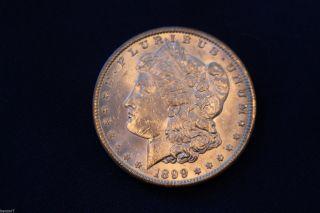 1899 - 0 Morgan Silver Dollar Brilliant Uncirculated M1261 photo