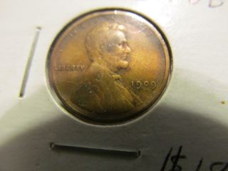 1909 Vdb Lincoln Wheat Penny Dealer Graded photo