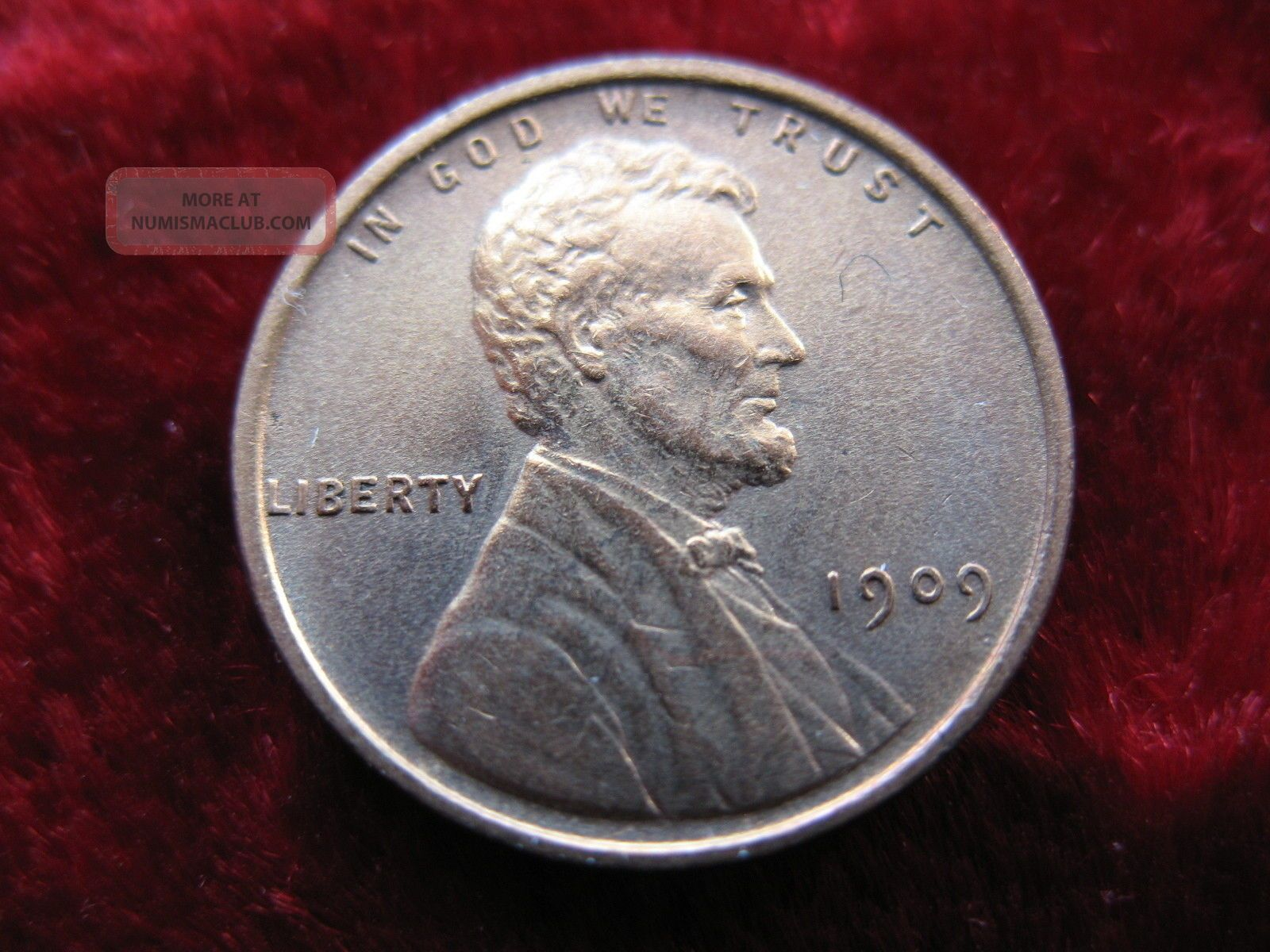 1909 - P - Vdb Lincoln Wheat Cent,  Beauty May Have Been Cleaned. Small Cents photo