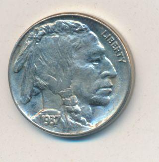 1937 Buffalo Nickel Choice Uncirculated photo