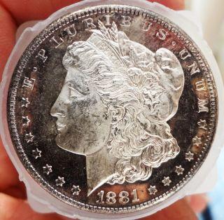 1881 S Bu/gem Morgan Silver Dollar Proof Like/dmpl,  Frosty Cameo photo