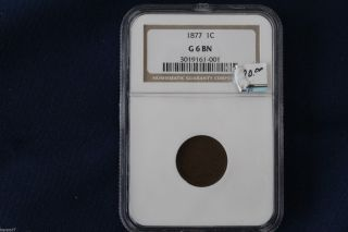 1877 Indian Head Cent Ngc G6 Bn Key Date M1008 photo