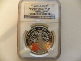 2013 Canada $20 Maple Canopy - Autumn Ngc Pf 70 Ultra Cameo,  First Releases photo