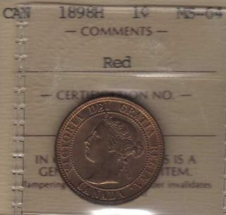 1898 Canada Large Cent.  Iccs Ms - 64.  Red photo
