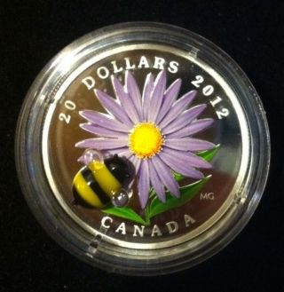 2012 Canada Glass Bumble Bee Aster Coin $20 9999 Silver Coin W/ Case & photo