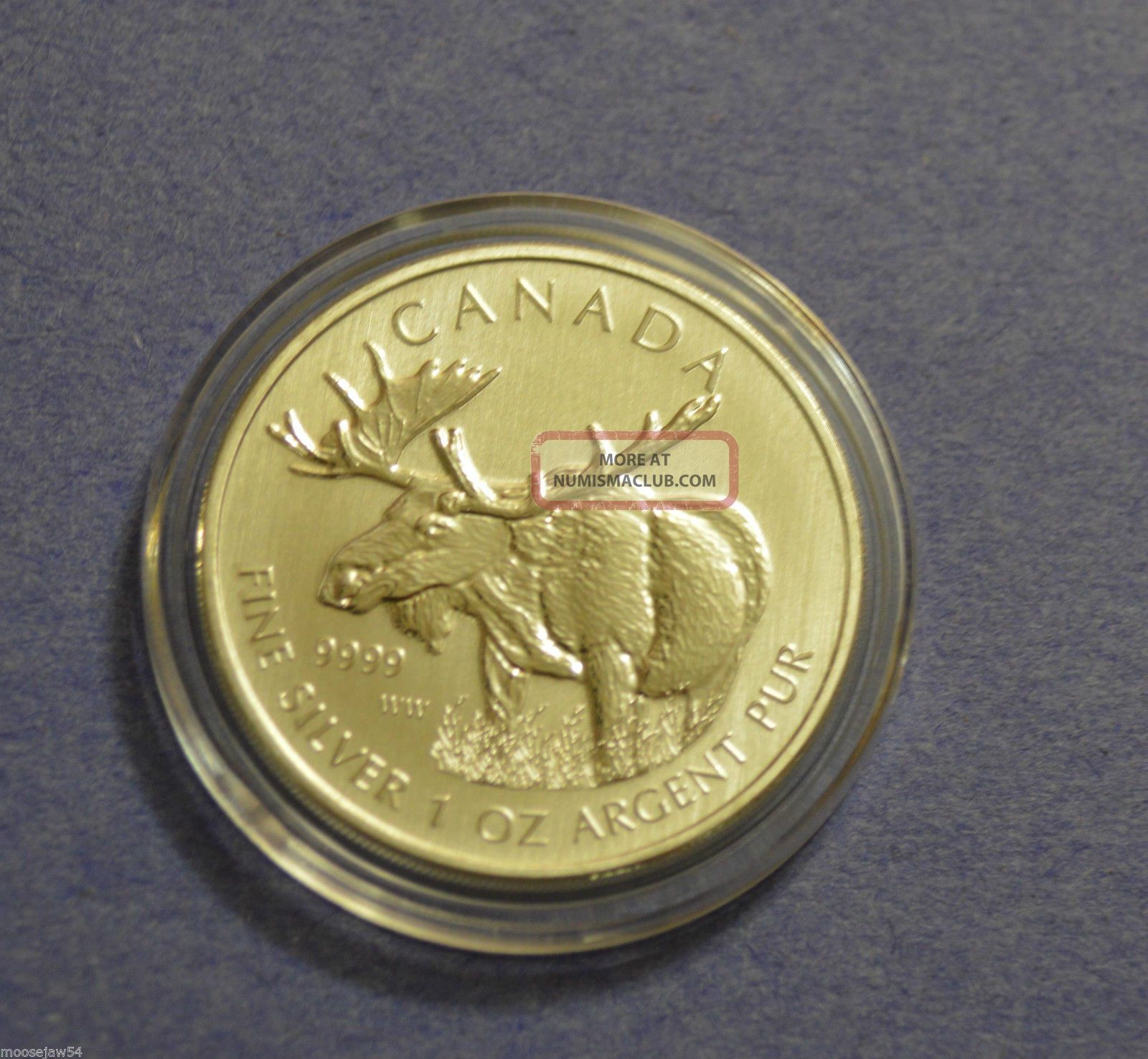 2012 Pure 9999 Silver Canadian Moose 1 Oz Coin