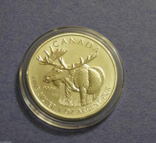 2012 Pure (. 9999) Silver Canadian - Moose - 1 Oz Coin - Limited Mintage photo