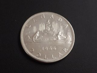 1966 Canadian Silver Dollar In Absolutely Spectacular Coin photo