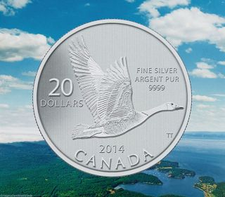 Canada 2014 $20 Canada Goose,  Fine.  9999 Silver Commemorative Coin,  No Tax photo