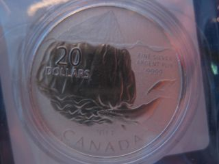 $20 For $20 Iceberg Canadian Silver Coin (9th In The Series) photo