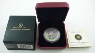 2012 Canada 25 Cents Coloured Coin - Aster With Bumble Bee - Box & photo