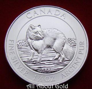 Canada Silver Coin 1 1/2 1.  5 Oz 2014 Snow Arctic Fox Royal.  9999 Fine Bu photo