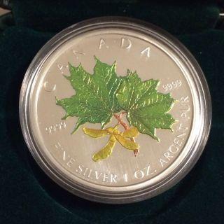 2002 Canada.  9999 1 Oz Silver Maple Leaf Coloured Coin - Spring photo