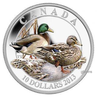 2013 $10 Fine Silver Coloured Coin Ducks Of Canada - Mallard photo