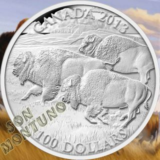 $100 Face Value Silver Coin Canada 2013 Bison Wildlife In Motion First Of Series photo