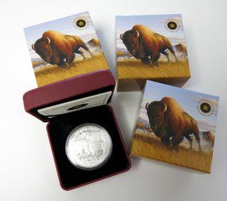 3x Canada $100 Bison Stampede - 2013 -.  9999 1 Oz Silver Coin Wildlife In Motion photo