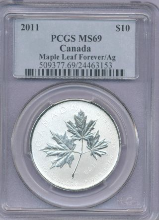 2011 1/2 Ounce Silver Maple Leaf Forever Pcgs Graded Ms69 First Year Of Design photo