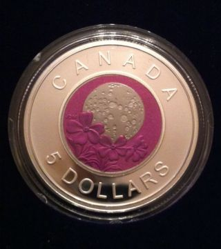 2012 Canada Full Pink Moon $5 Sterling Silver Coin Niobium Flower Coin Scarce photo