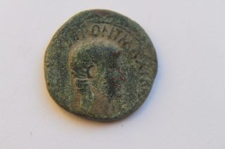 Ancient Roman Augustus As Coin 1st Century Bc/ad Caesar photo