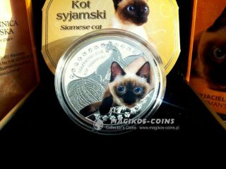 Man ' S Best Friends Cats Siamese Cat - Second With Serie Niue Islands 2014 1$ photo