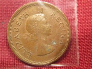 1/4 Farthing South Africa - - 1955 Love Birds On Reverse & Elizabeth Ii On Front photo