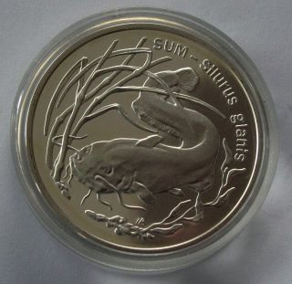 1995 Poland 999 Silver Coin Crown 20 Zlotych Catfish Proof Km Y290 photo