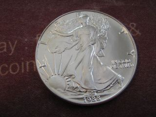1988 Bu American Eagle Silver Dollar Coin photo