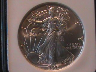 2005 American Eagle $1 Silver Ngc Ms 69 photo