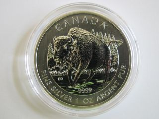 2013 Bu Silver Canadian Wood Bison Wildlife Series 1 Troy Ounce Oz In Airtite photo