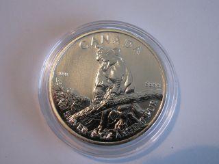 2012 Bu Silver Canadian Cougar Wildlife Series 1 Troy Ounce Oz photo