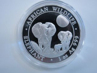 2014 Silver 1 Oz Somali African Wildlife Elephant 100 Shillings.  999 Proof Like photo
