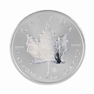 2014 Canada Maple Leaf 1 Oz 9999 Silver Coin Winter Colorized Maple Leaf Rare photo