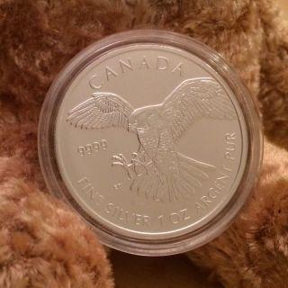 2014 Canada $5 1 Oz.  9999 Silver Bullion Bird Of Prey - Series - Falcon photo