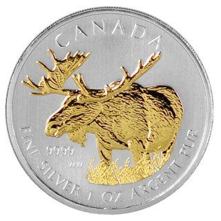 2012 1 Oz Ounce Silver Canadian Moose Gold Gilded Silver Coin 24k.  999 Rare Rcm photo