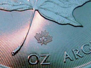 2014 Canadian Silver Maple Leaf 1 Troy Oz.  Bullion 99.  99% In Air - Tite L@@k photo