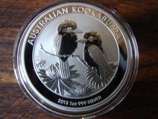2013 1oz Silver Australian Kookaburra Coin.  999 Bu Gem photo