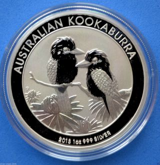2013 Kookaburra 1 Oz.  999 Perth Australian Pure Silver Coin photo