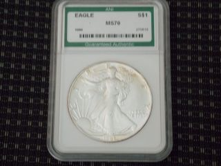 1986 Silver Eagle First Year Issue photo