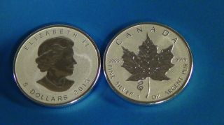 2013 1 Oz Silver Canadian Maple Proof Rv Design Lunar Marked Snake.  25000. photo