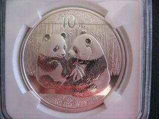 Bu Ms69 Ngc Certified 2009 China Panda 10 Yuan Silver Bullion Coin, .  999 Silver photo