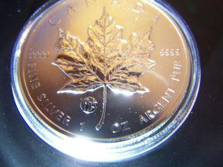 2013 Canada F15 Privy Mark - 1oz Silver Maple Leaf Coin With photo