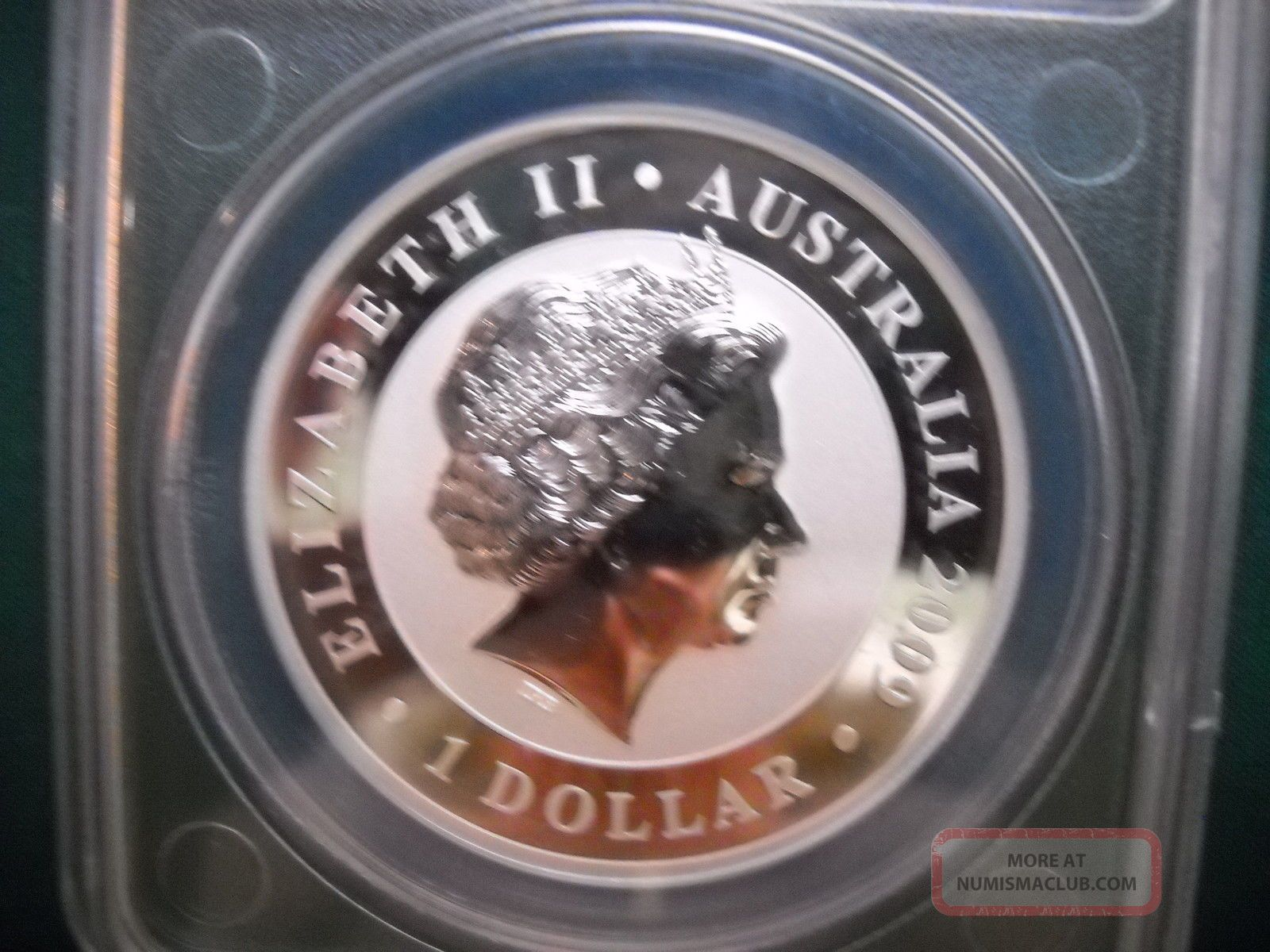 2009 P Australian Koala Anacs Ms70 Dcam 1 Oz