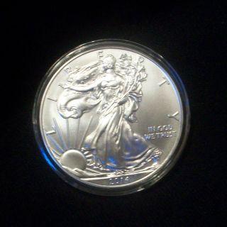 2014 American Silver Eagle 1 Oz (brilliant Uncirculated) photo