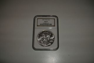 1987 Silver Eagle,  Ngc Graded Ms69,  Brown Label photo