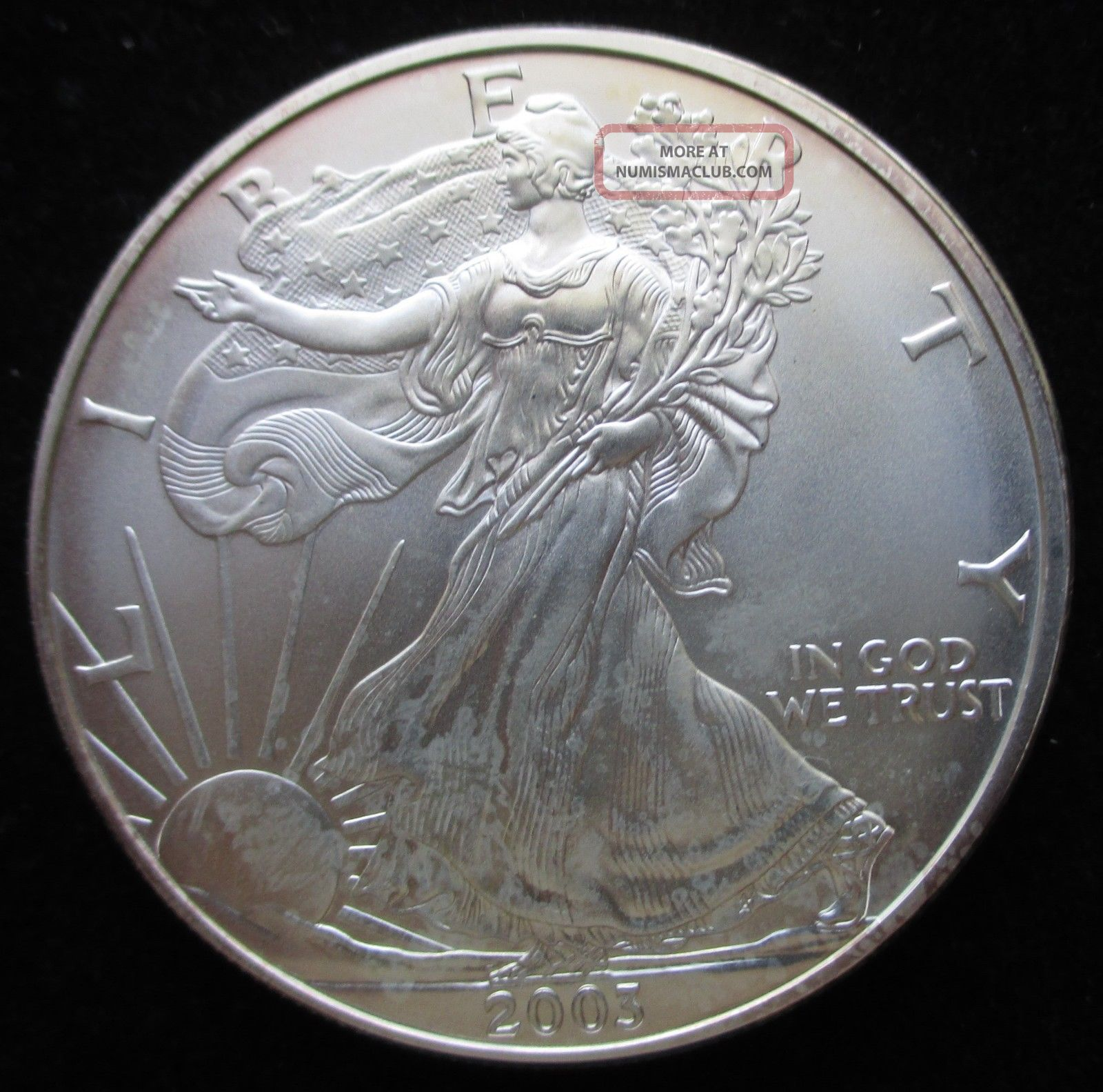 2003 Silver American Eagle One Dollar 1 Oz Uncirculated