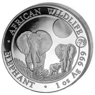 Somaila 100 Sh Elephant 1 Oz 2014 Silver Coin With Horse Very Low Mintage. photo
