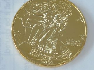 2005 American Silver Eagle Gold Over Silver One Troy Ounce.  999 Fine B9163 photo