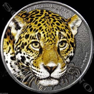 2013 Cameroon Leopard Colored African Big Five 1 Oz.  999 Silver Coin 1000 Francs photo