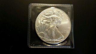 2014 American Silver Eagle photo